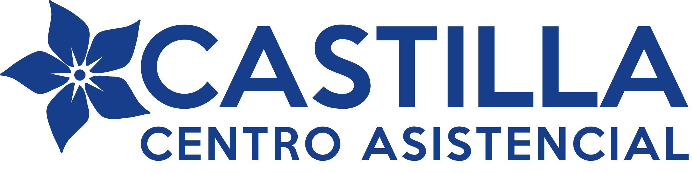 Centro Asistencial Castilla